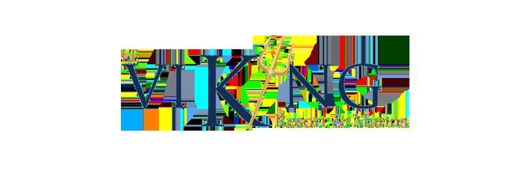 banniere-logo-le-viking